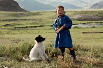 le-chien-jaune-de-mongolie_2539_4ea5f53ba34d4b3d2d0008dd_1320301320